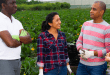 2021 Farm Worker Jobs in Canada